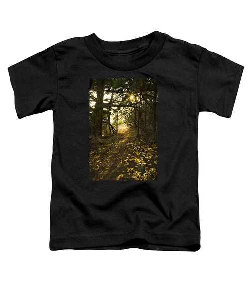 Autumn Trail In Woods Toddler T-Shirt by Yulia Kazansky