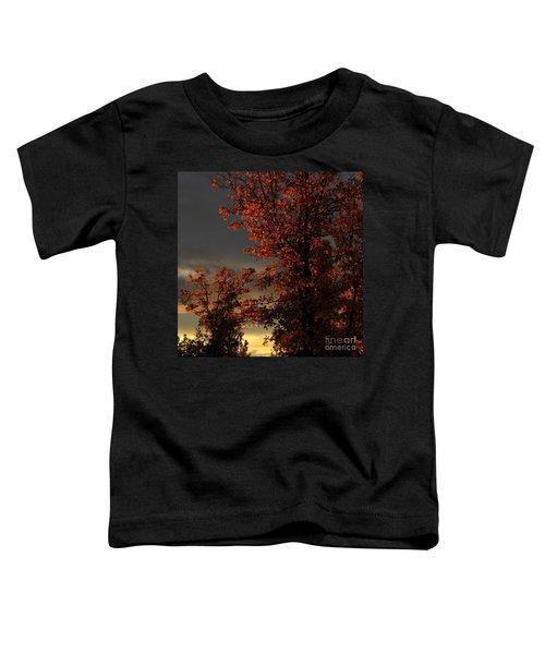 Autumn's First Light Toddler T-Shirt