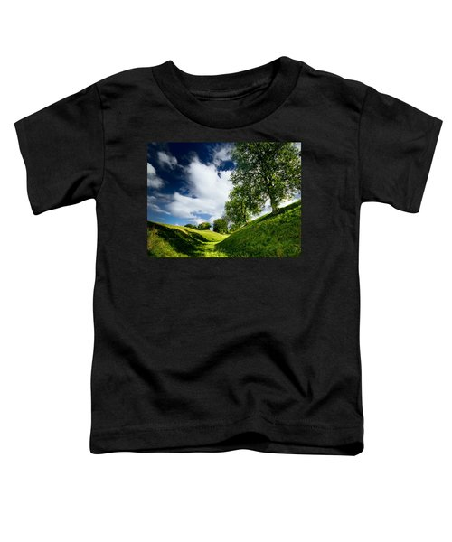 Avebury Hillside Toddler T-Shirt