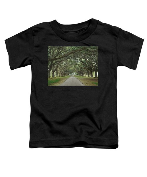 147706-avenue Of The Oaks  Toddler T-Shirt
