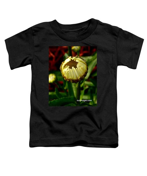 Baby Daisy Toddler T-Shirt