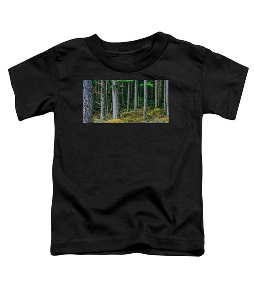 Inside View Backroad Forest Toddler T-Shirt