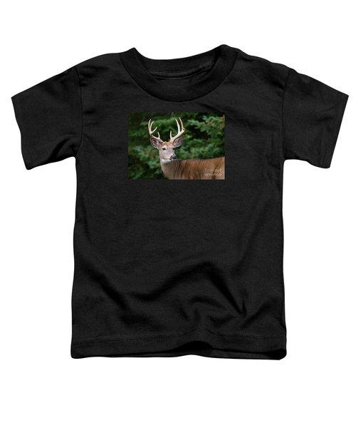 Backward Glance Toddler T-Shirt