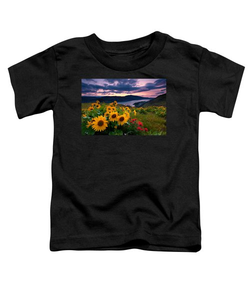 Balsam Root Sunrise Toddler T-Shirt