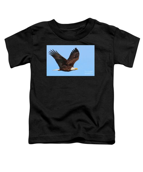 Bald Eagle In Flight Toddler T-Shirt