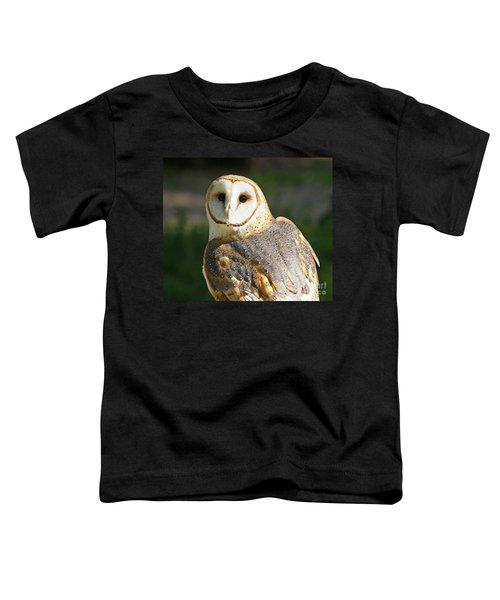 Barn Owl In Bright Sun Toddler T-Shirt