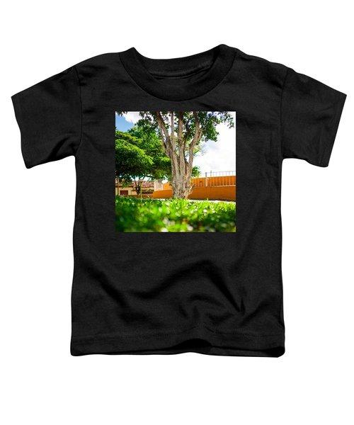 Beautiful Brazil! Toddler T-Shirt