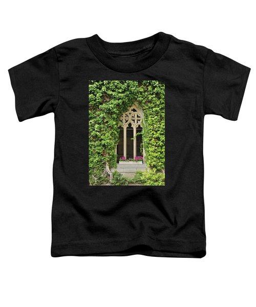 Beautiful Old Window Toddler T-Shirt