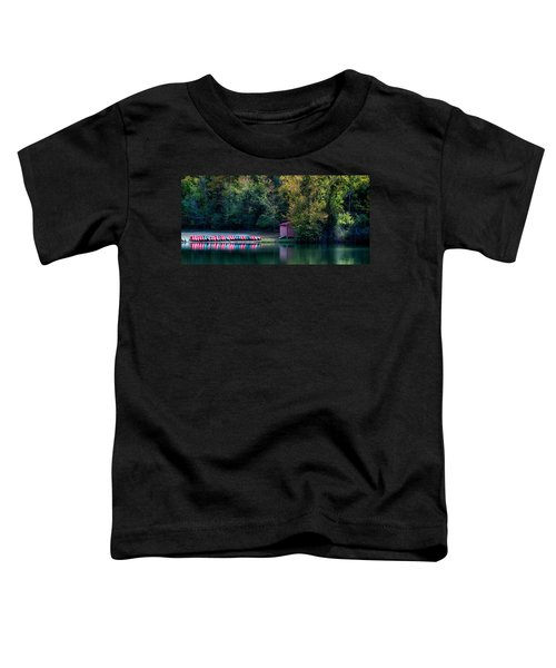Beavers Bend Reflection Toddler T-Shirt