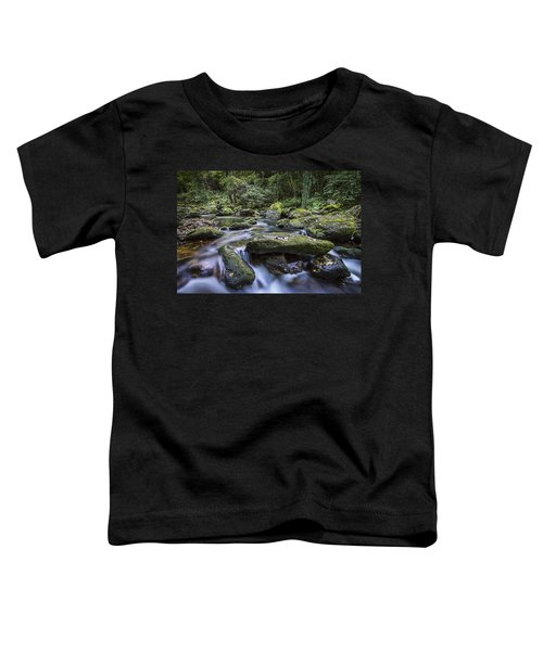 Belelle River Neda Galicia Spain Toddler T-Shirt