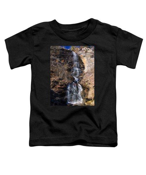 Big Bradley Falls 2 Toddler T-Shirt