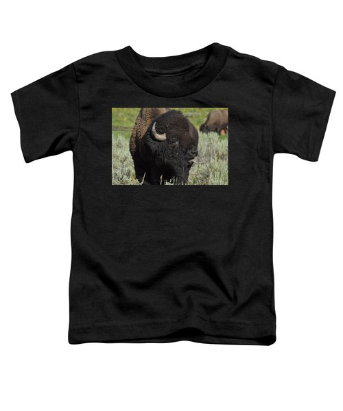 Bison Toddler T-Shirt