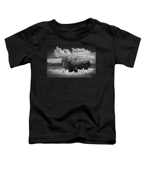 Black And White Photograph Of An American Buffalo Toddler T-Shirt
