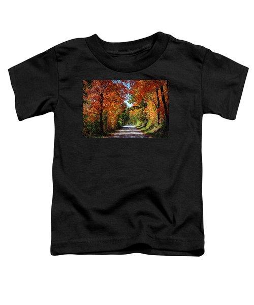 Blaze Of Glory Toddler T-Shirt