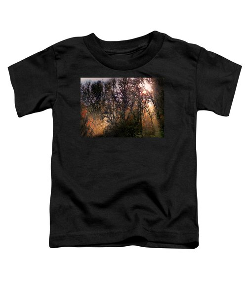 Blessings Toddler T-Shirt