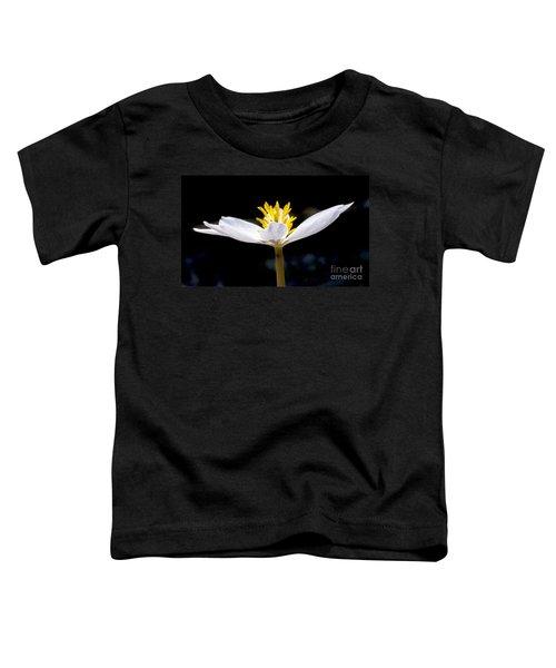 Bloodroot 1 Toddler T-Shirt