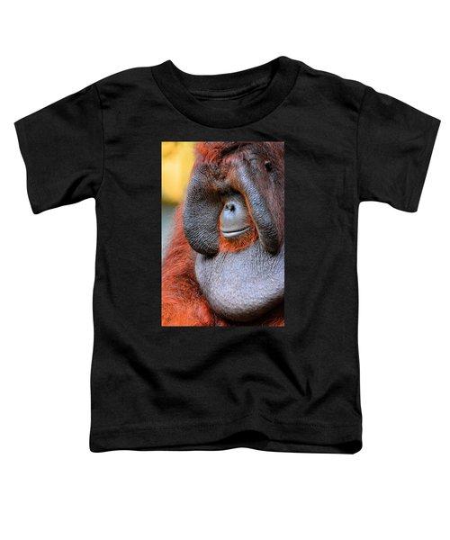 Bornean Orangutan Vi Toddler T-Shirt by Lourry Legarde