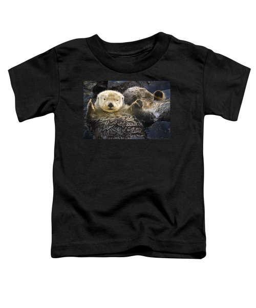 Captive Two Sea Otters Holding Paws At Toddler T-Shirt