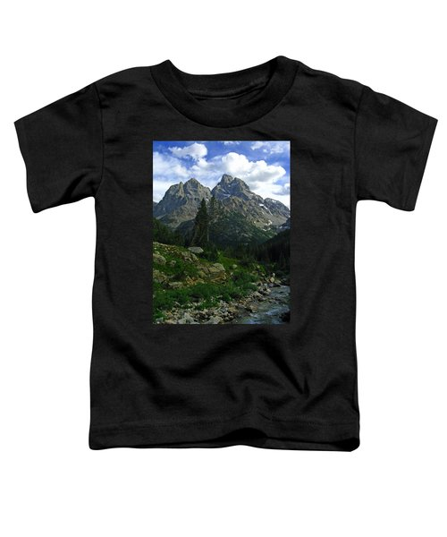 Cascade Creek The Grand Mount Owen Toddler T-Shirt