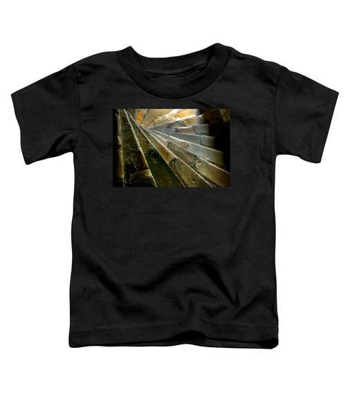 Castle Steps Toddler T-Shirt