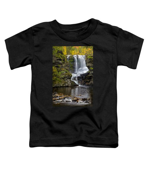 Childs Park Waterfall Toddler T-Shirt