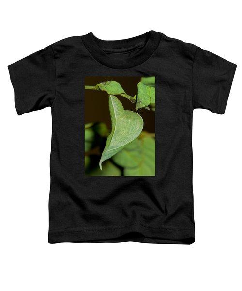 Cloudless Sulfur Chrysalis Toddler T-Shirt