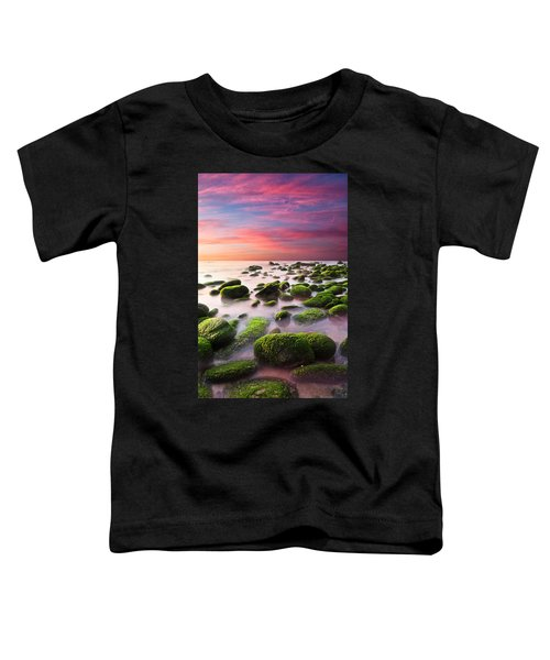 Color Harmony Toddler T-Shirt