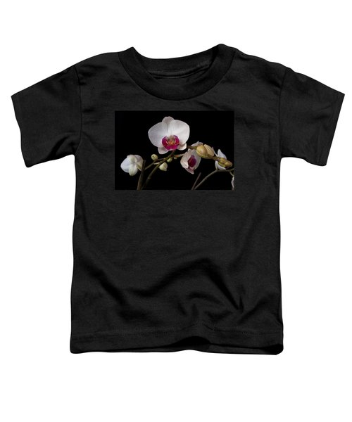 Colorful Moth Orchid Toddler T-Shirt
