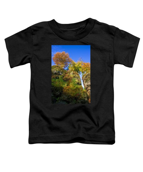 Colorful Trees In The Elbe Sandstone Mountains Toddler T-Shirt