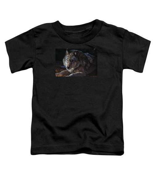 Colors Of A Wolf Toddler T-Shirt