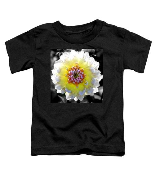 Colorwheel Toddler T-Shirt