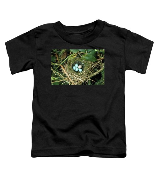 Common Cuckoo Cuculus Canorus Egg Laid Toddler T-Shirt by Jean Hall