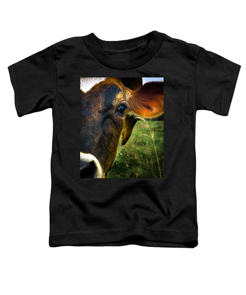 Cow Eating Grass Toddler T-Shirt by Bob Orsillo