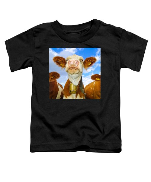 Cow Looking At You - Funny Animal Picture Toddler T-Shirt