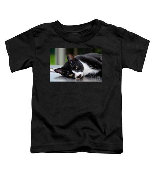 Cute Black And White Tuxedo Cat With Nipped Ear Rests  Toddler T-Shirt