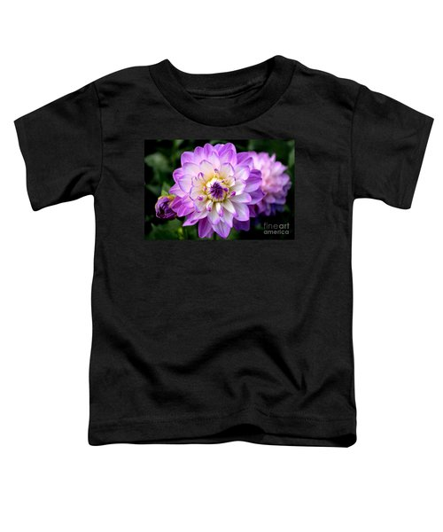 Dahlia Flower With Purple Tips Toddler T-Shirt