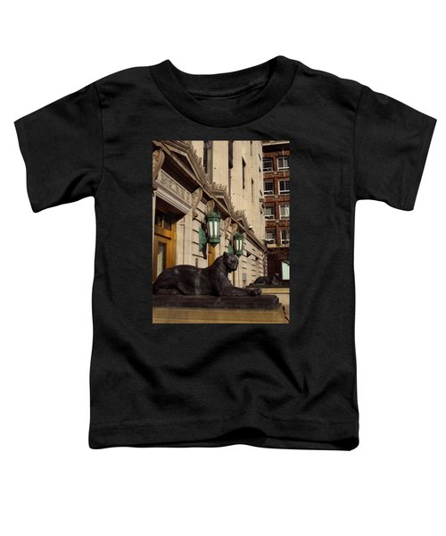 Denver Architecture 2 Toddler T-Shirt