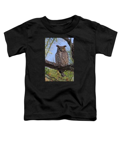 Don't Mess With My Chicks #2 Toddler T-Shirt