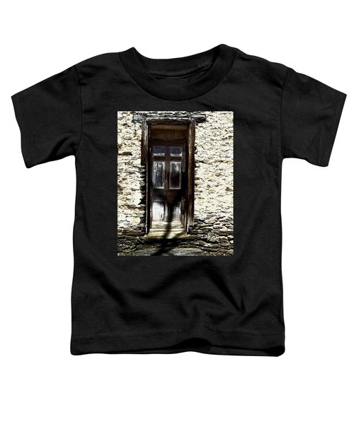 Door 3769 Toddler T-Shirt