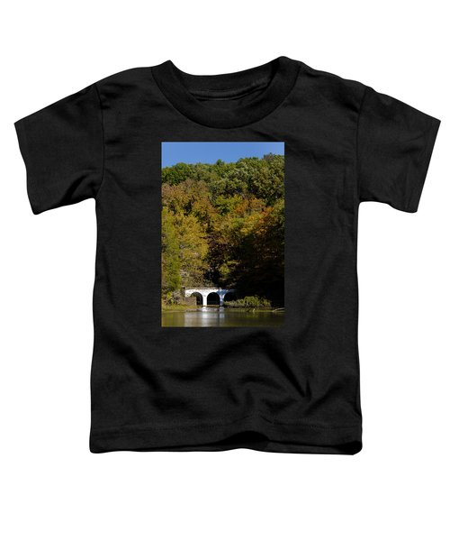 Dunbar Cave And Swan Lake Toddler T-Shirt