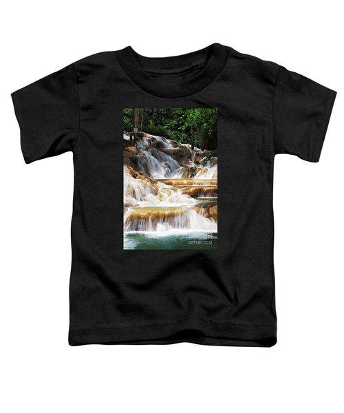 Dunn Falls _ Toddler T-Shirt
