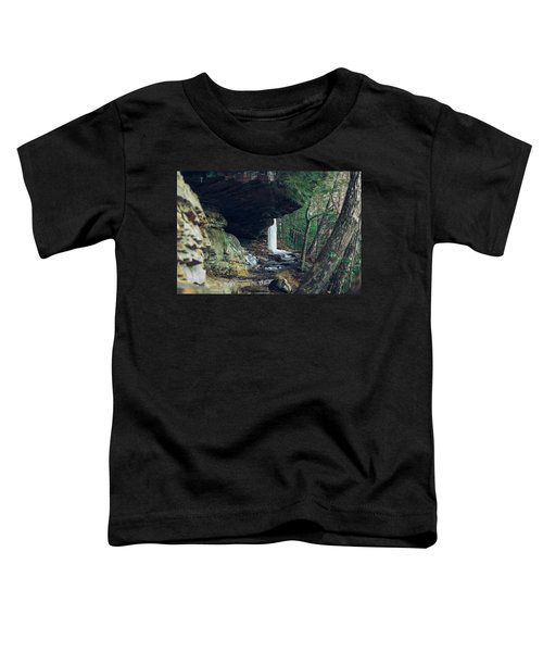 Eaglefalls Trail In Winter Toddler T-Shirt