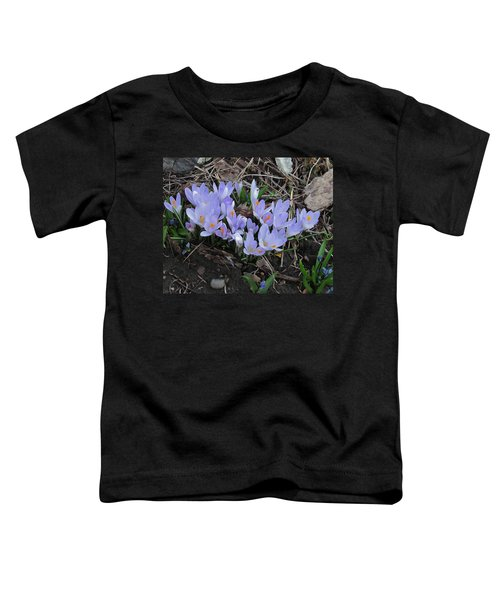 Early Crocuses Toddler T-Shirt