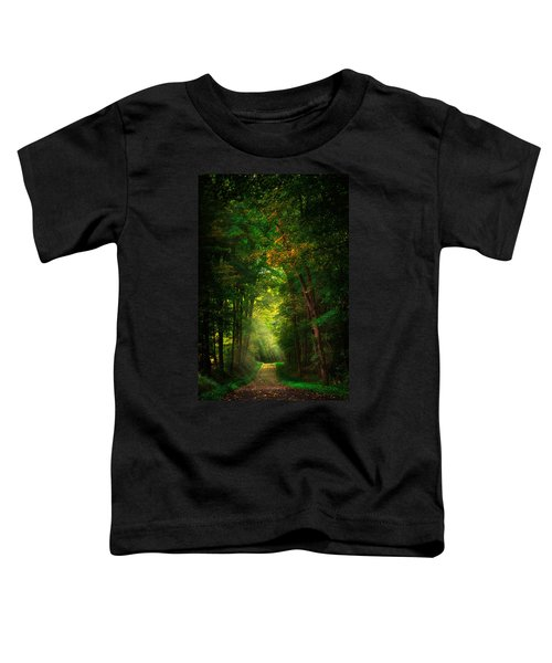 Early  Mist  Toddler T-Shirt