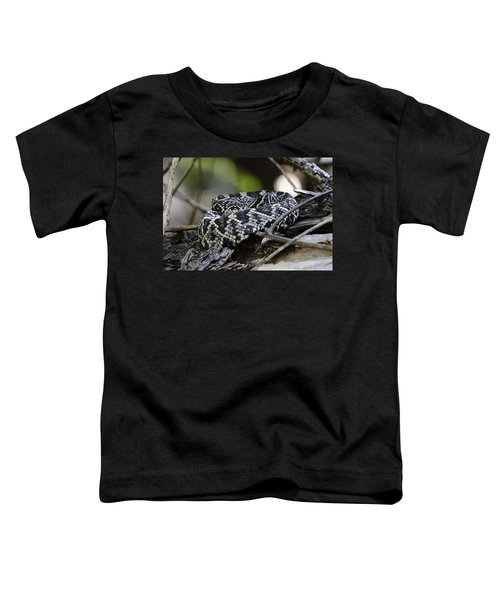 Eastern Diamondback-1 Toddler T-Shirt by Rudy Umans