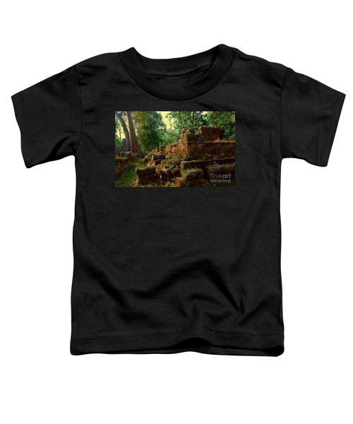 Edge Of Ruin Toddler T-Shirt