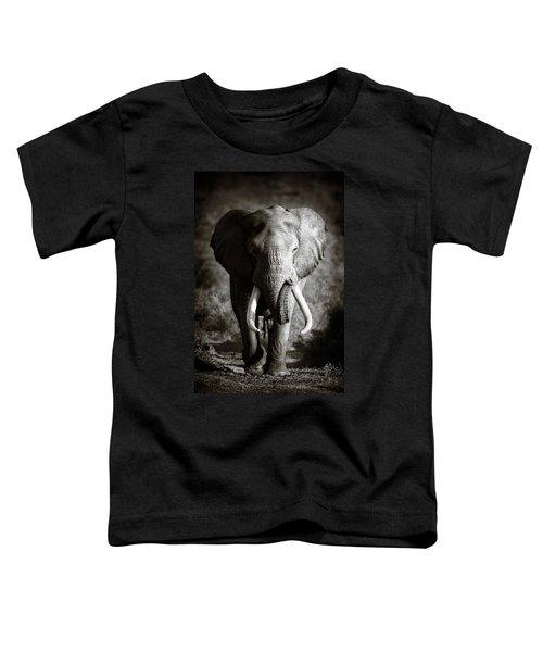 Elephant Bull Toddler T-Shirt