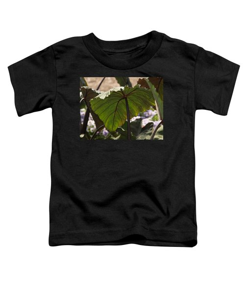 Elephant Ear Toddler T-Shirt by James Peterson