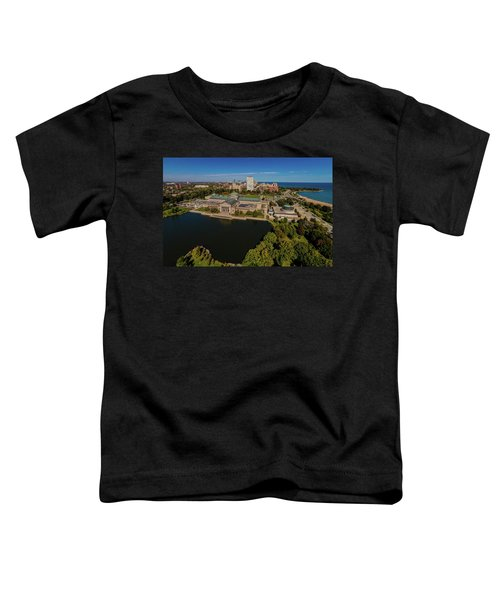 Elevated View Of The Museum Of Science Toddler T-Shirt