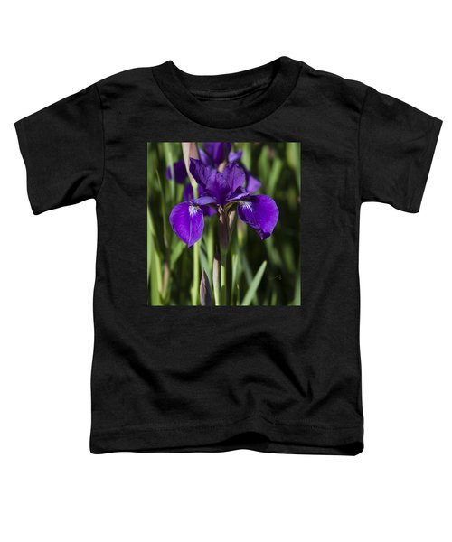 Eloquent Iris Toddler T-Shirt
